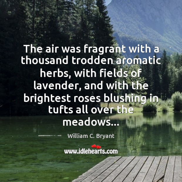 The air was fragrant with a thousand trodden aromatic herbs, with fields Image