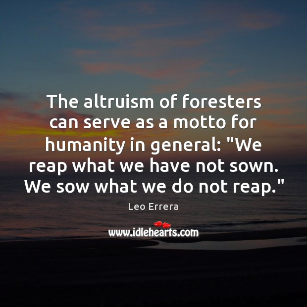 The altruism of foresters can serve as a motto for humanity in Image
