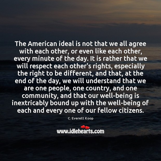 The American ideal is not that we all agree with each other, Image