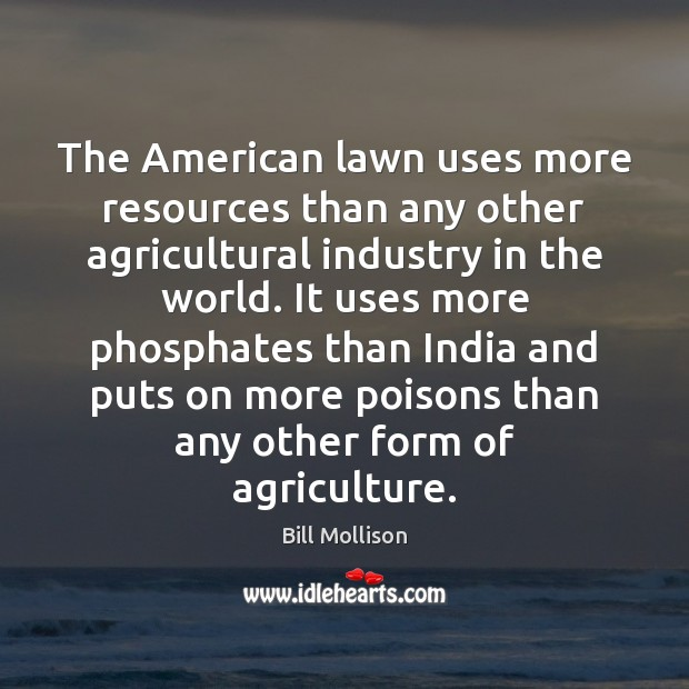 Image, The American lawn uses more resources than any other agricultural industry in