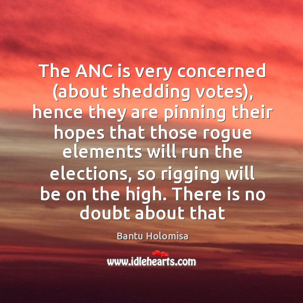 Image, The ANC is very concerned (about shedding votes), hence they are pinning