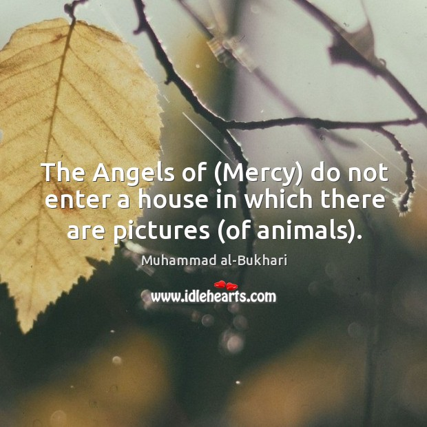 The Angels of (Mercy) do not enter a house in which there are pictures (of animals). Image