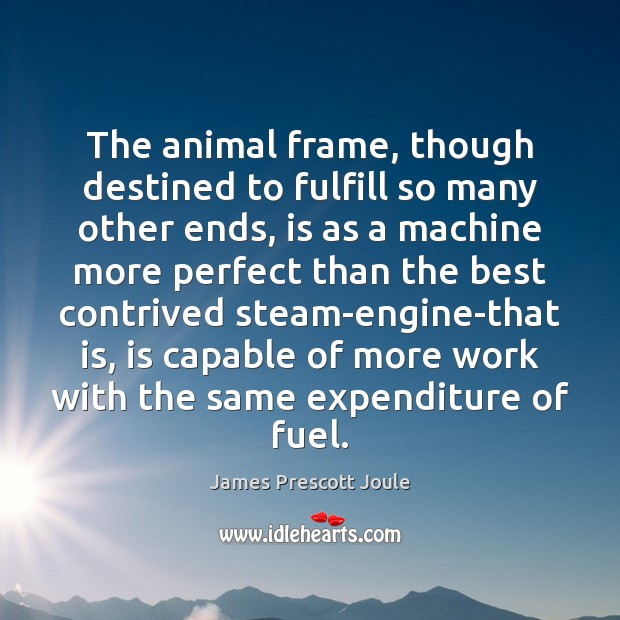 The animal frame, though destined to fulfill so many other ends, is Image