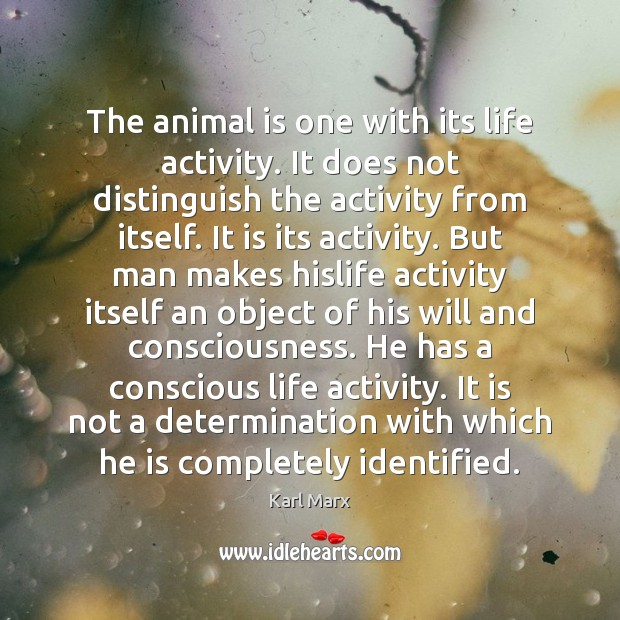Image about The animal is one with its life activity. It does not distinguish