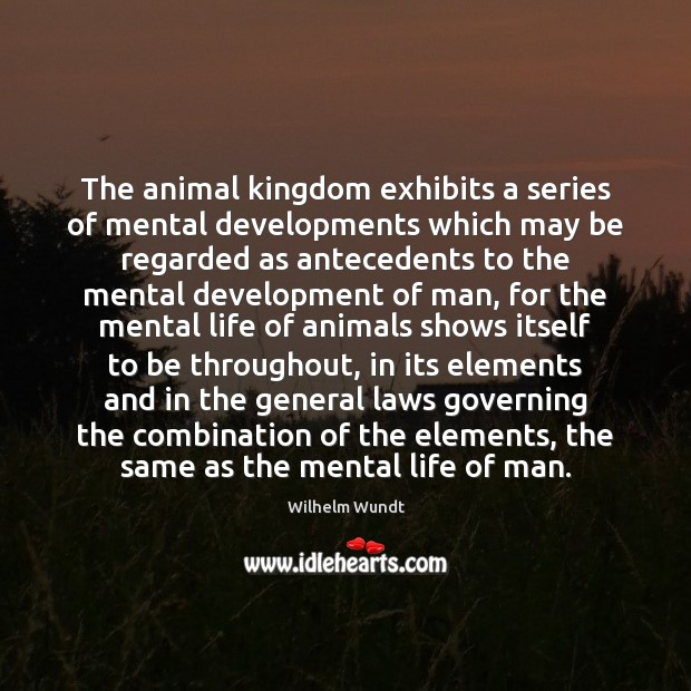 Image, The animal kingdom exhibits a series of mental developments which may be