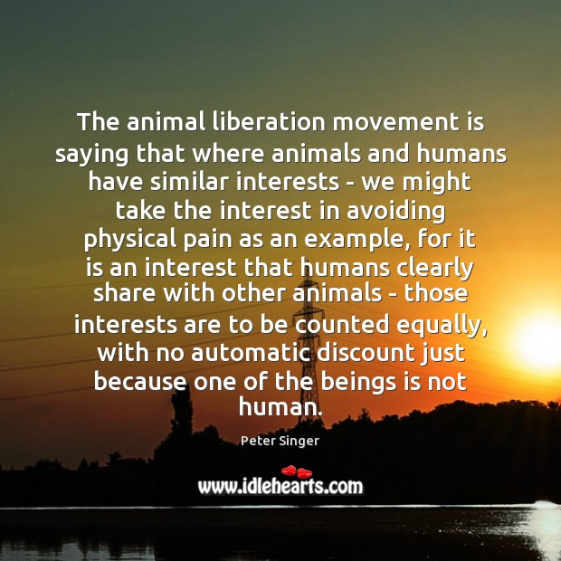Image, The animal liberation movement is saying that where animals and humans have