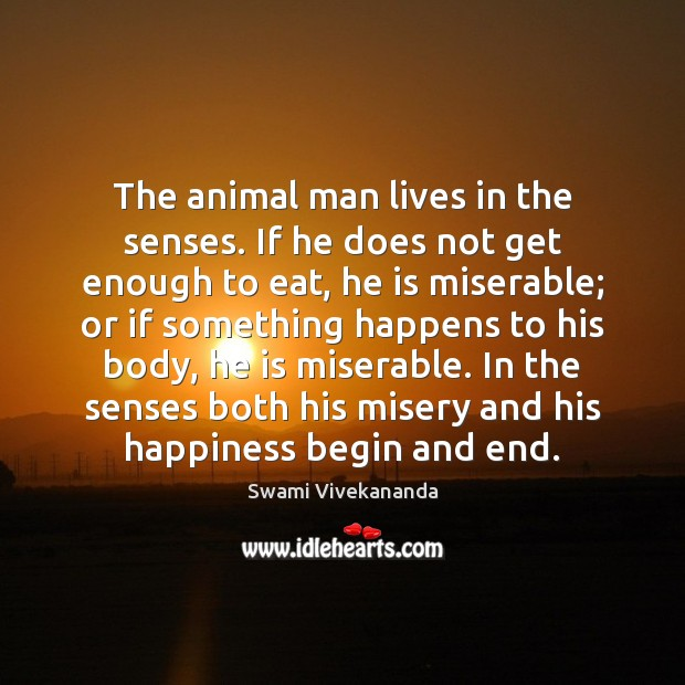 The animal man lives in the senses. If he does not get Swami Vivekananda Picture Quote
