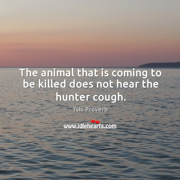 The animal that is coming to be killed does not hear the hunter cough. Tshi Proverbs Image