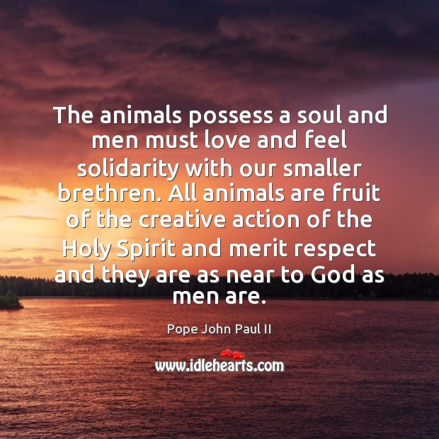 Image, The animals possess a soul and men must love and feel solidarity