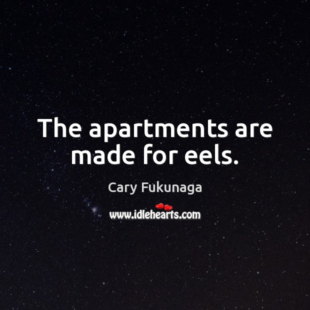 Image, The apartments are made for eels.