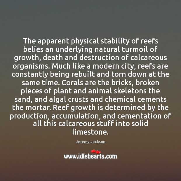 Image, The apparent physical stability of reefs belies an underlying natural turmoil of