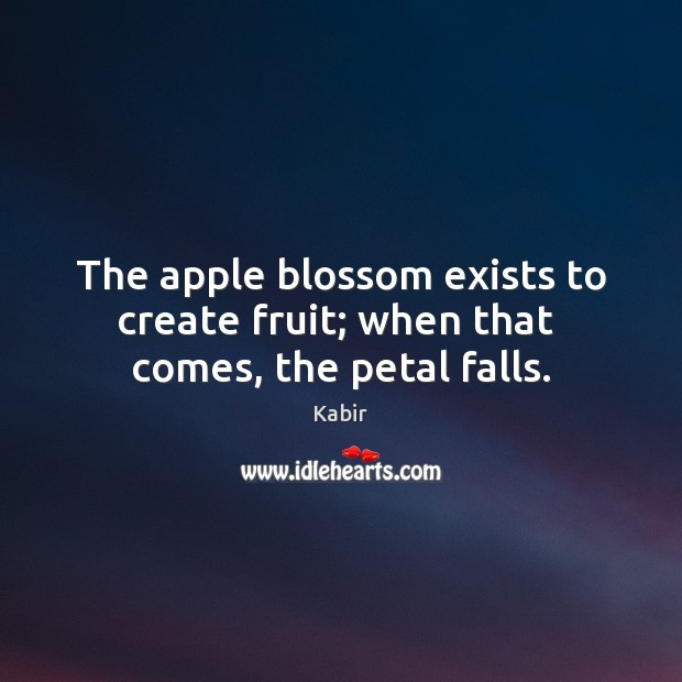 The apple blossom exists to create fruit; when that  comes, the petal falls. Image
