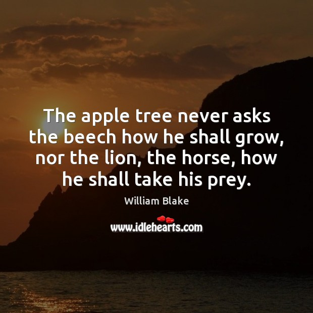 The apple tree never asks the beech how he shall grow, nor Image