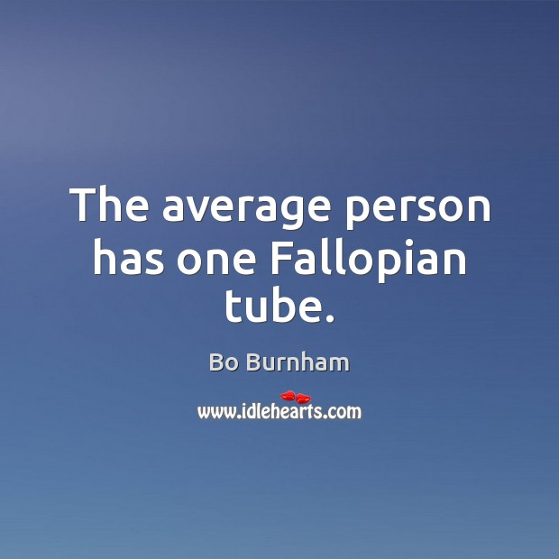 The average person has one Fallopian tube. Bo Burnham Picture Quote