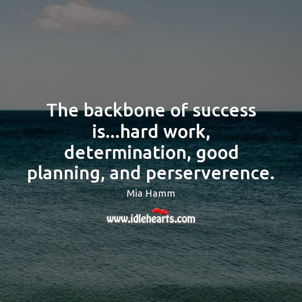 The backbone of success is…hard work, determination, good planning, and perserverence. Image