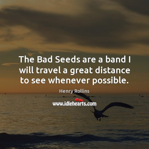 Image, The Bad Seeds are a band I will travel a great distance to see whenever possible.