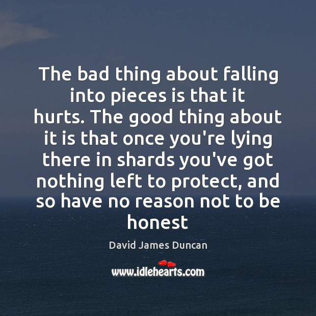 The bad thing about falling into pieces is that it hurts. The Image
