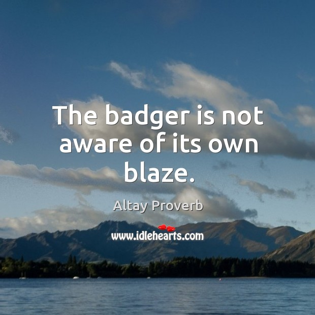 The badger is not aware of its own blaze. Altay Proverbs Image