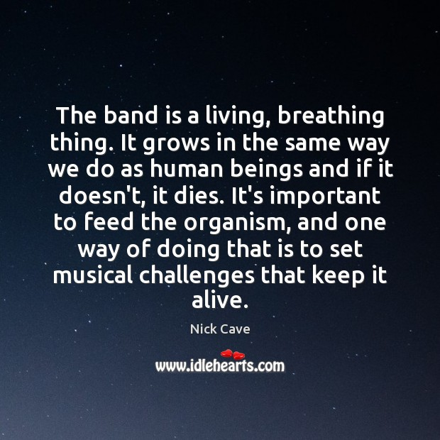 Image, The band is a living, breathing thing. It grows in the same
