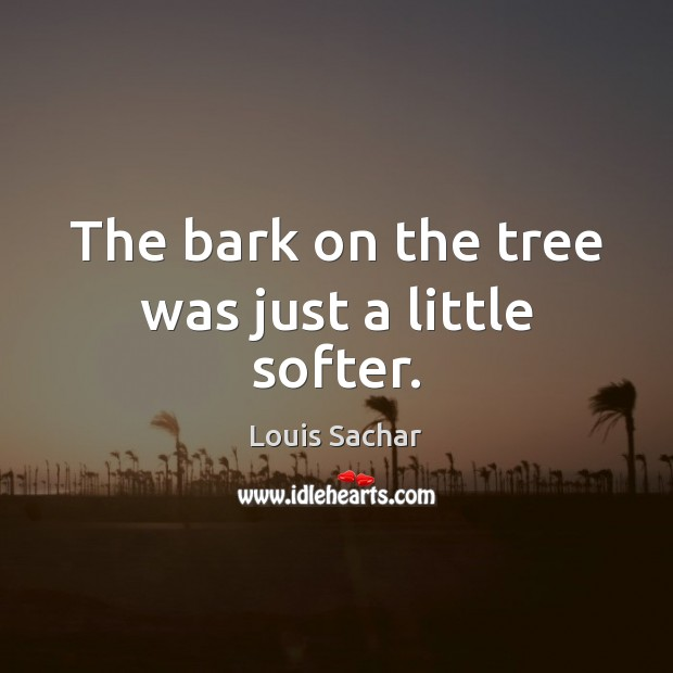 The bark on the tree was just a little softer. Louis Sachar Picture Quote