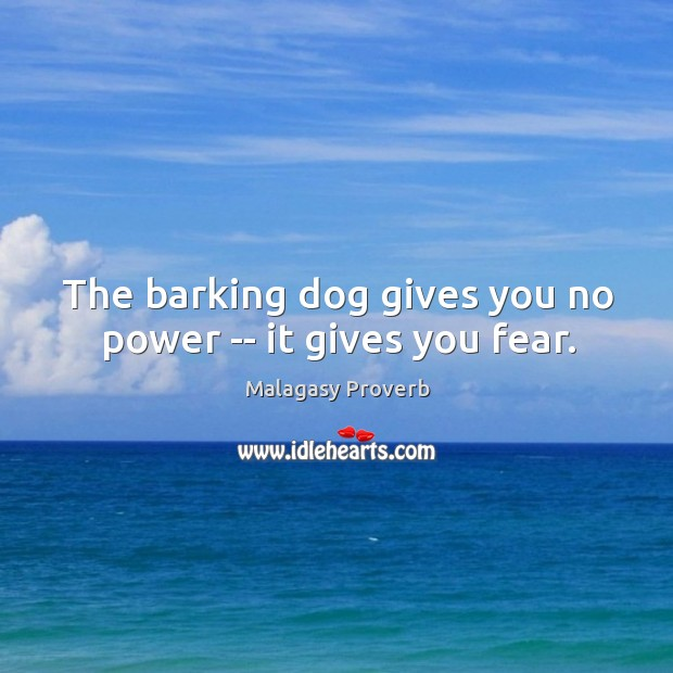 The barking dog gives you no power — it gives you fear. Malagasy Proverbs Image