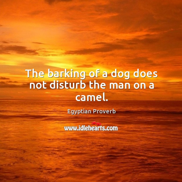 The barking of a dog does not disturb the man on a camel. Egyptian Proverbs Image