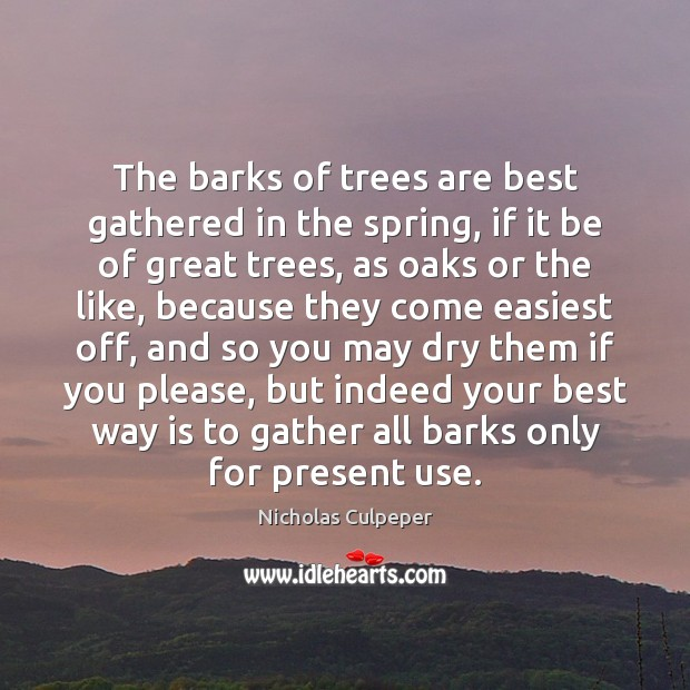 Image, The barks of trees are best gathered in the spring, if it