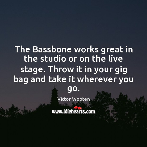 The Bassbone works great in the studio or on the live stage. Image