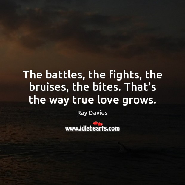 The battles, the fights, the bruises, the bites. That's the way true love grows. Ray Davies Picture Quote