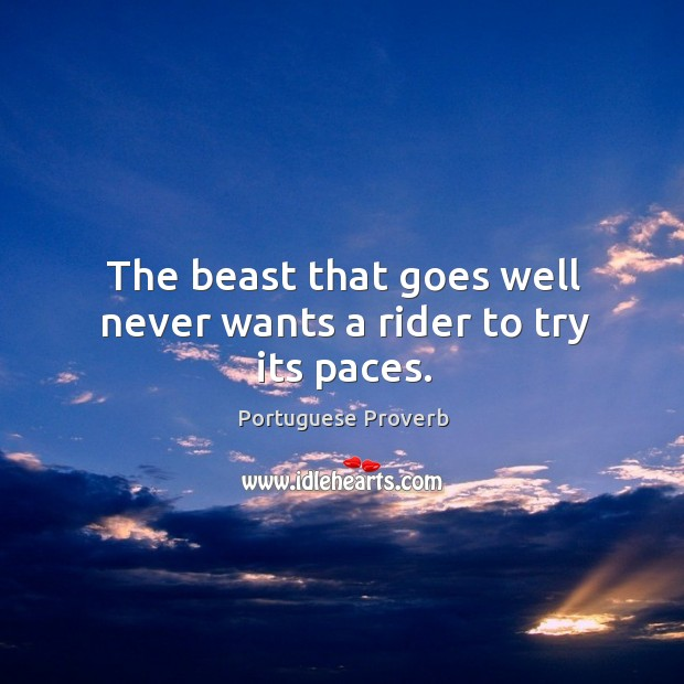 The beast that goes well never wants a rider to try its paces. Image