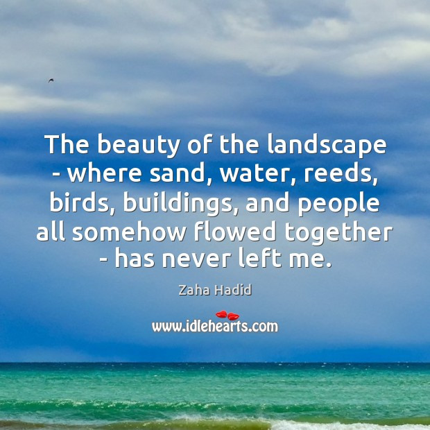 The beauty of the landscape – where sand, water, reeds, birds, buildings, Zaha Hadid Picture Quote