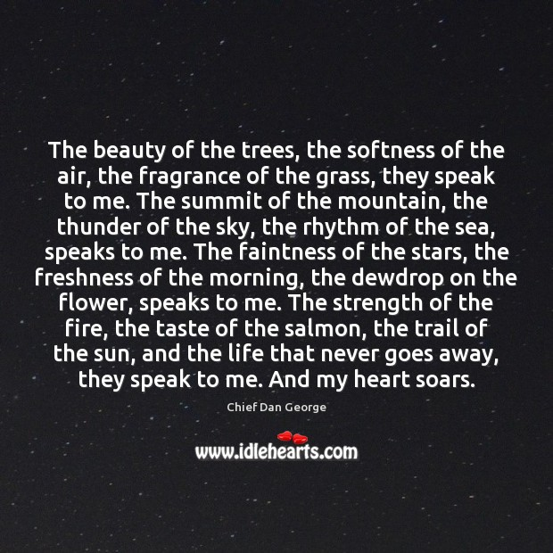 Image, The beauty of the trees, the softness of the air, the fragrance