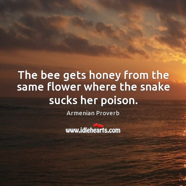 The bee gets honey from the same flower where the snake sucks her poison. Armenian Proverbs Image