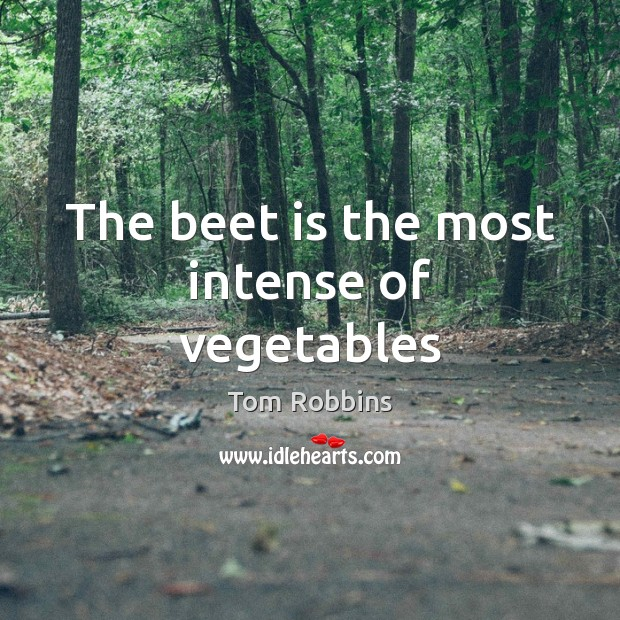 The beet is the most intense of vegetables Tom Robbins Picture Quote