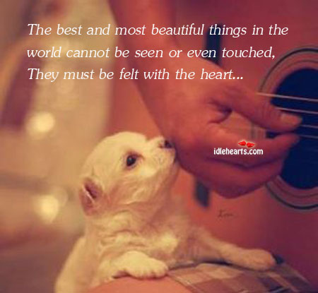 The Best And Most Beautiful Things In The World Cannot.