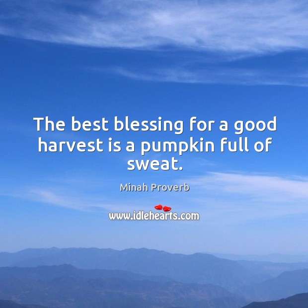 The best blessing for a good harvest is a pumpkin full of sweat. Minah Proverbs Image