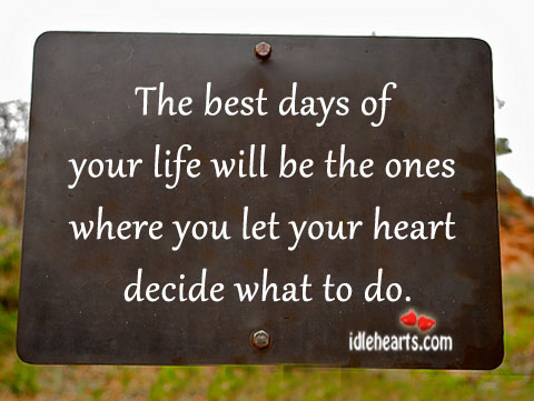 The Best Days Of Your Life Will Be The Ones…