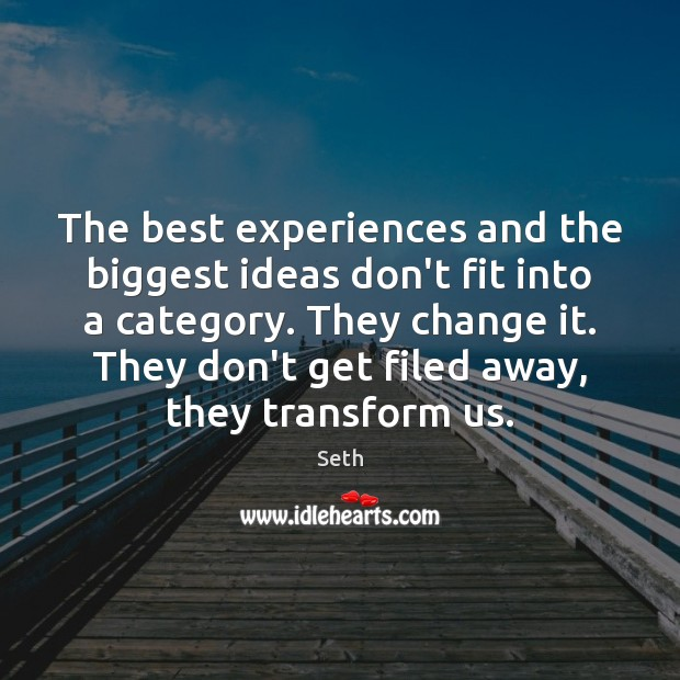 The best experiences and the biggest ideas don't fit into a category. Seth Picture Quote