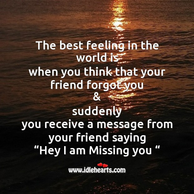 The best feeling in the world is Friendship Day Messages Image