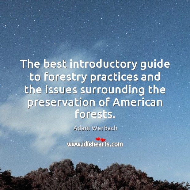 Image, The best introductory guide to forestry practices and the issues surrounding the