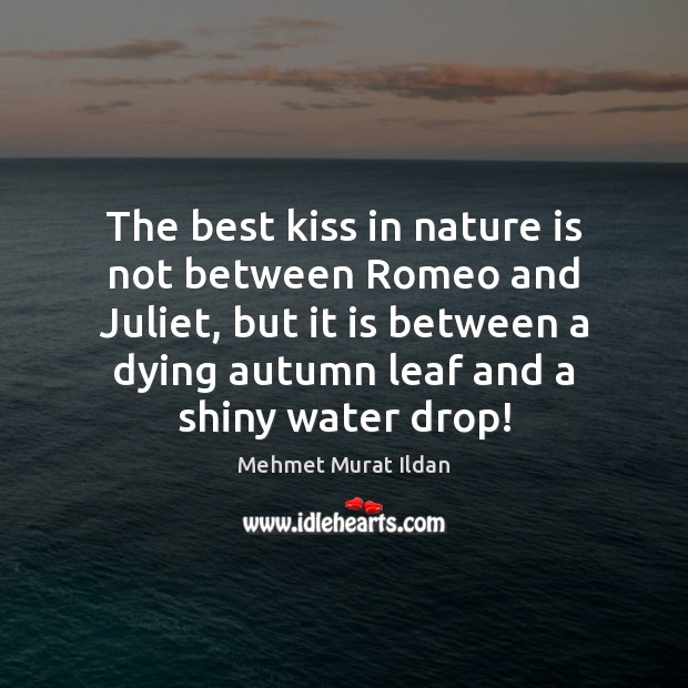 The best kiss in nature is not between Romeo and Juliet, but Image