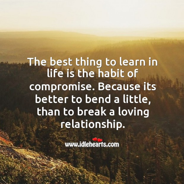 Image, The best thing to learn in life is the habit of compromise.