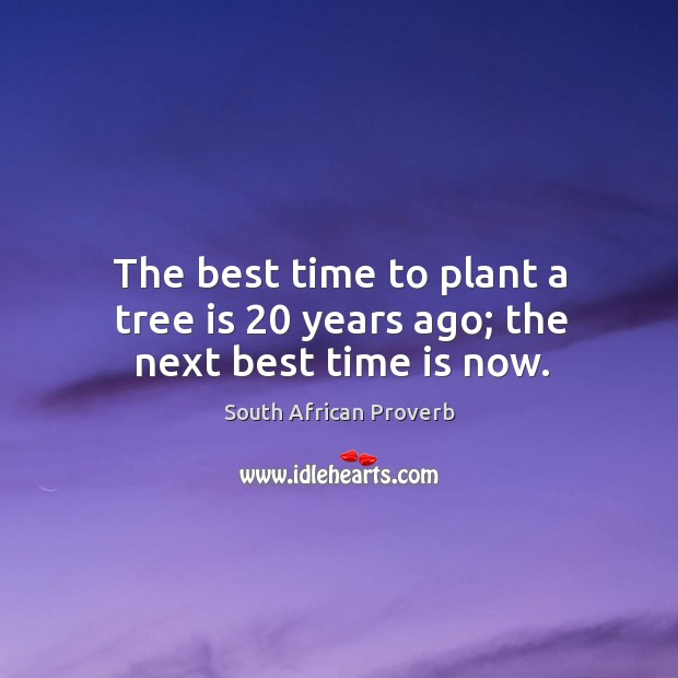 The best time to plant a tree is 20 years ago; the next best time is now. South African Proverbs Image