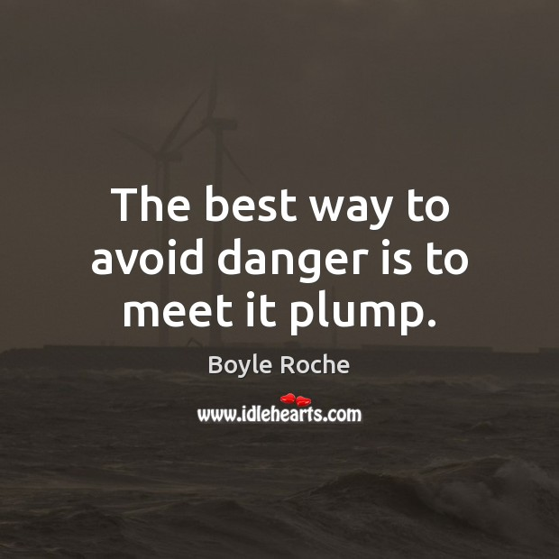 The best way to avoid danger is to meet it plump. Image