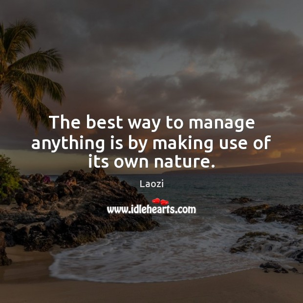 Image, The best way to manage anything is by making use of its own nature.