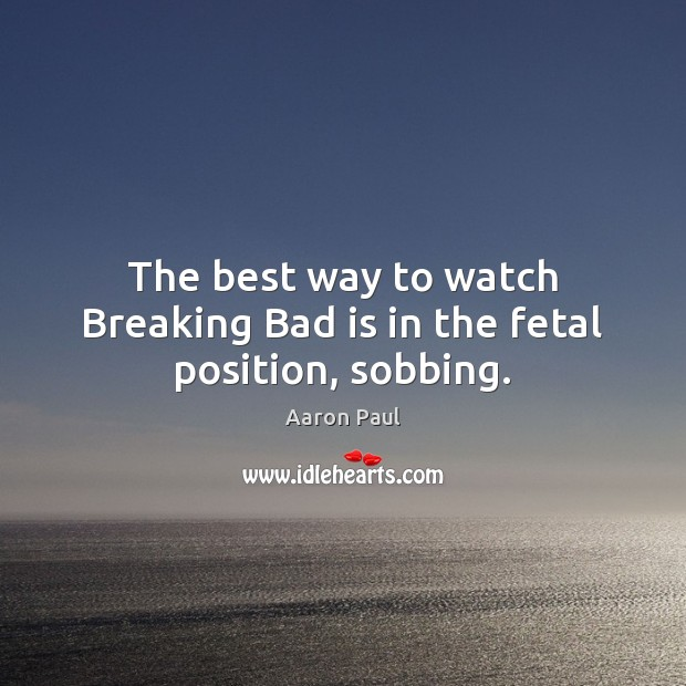 The best way to watch Breaking Bad is in the fetal position, sobbing. Image