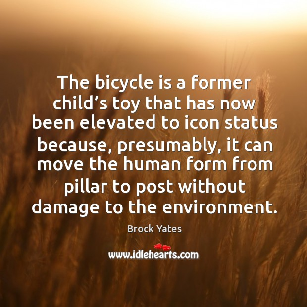 The bicycle is a former child's toy that has now been elevated to icon status because Image