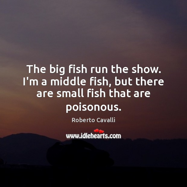 The big fish run the show. I'm a middle fish, but there are small fish that are poisonous. Image
