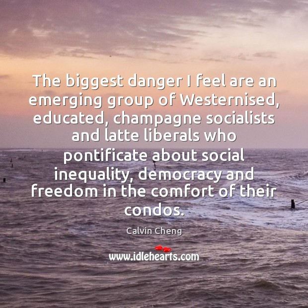 The biggest danger I feel are an emerging group of Westernised, educated, Image
