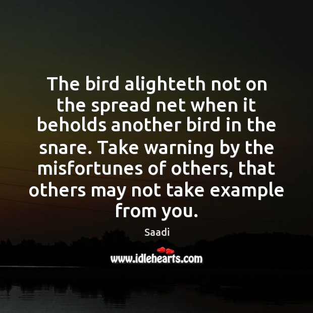 The bird alighteth not on the spread net when it beholds another Saadi Picture Quote